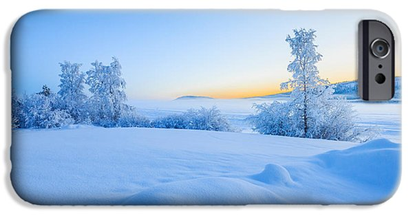 Lapland iPhone Cases - Snow Covered Trees In Extreme Cold iPhone Case by Panoramic Images