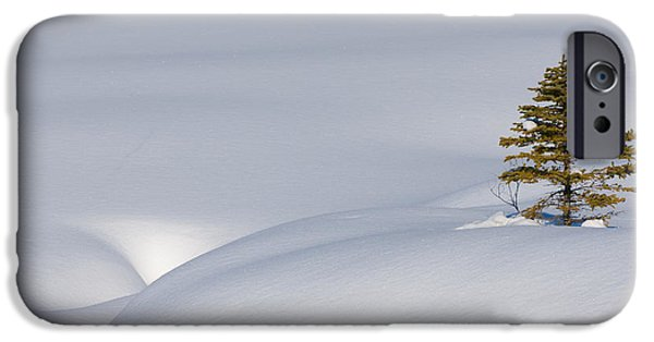 Mounds iPhone Cases - Snow Mounds At Graveyard Flats iPhone Case by John Shaw