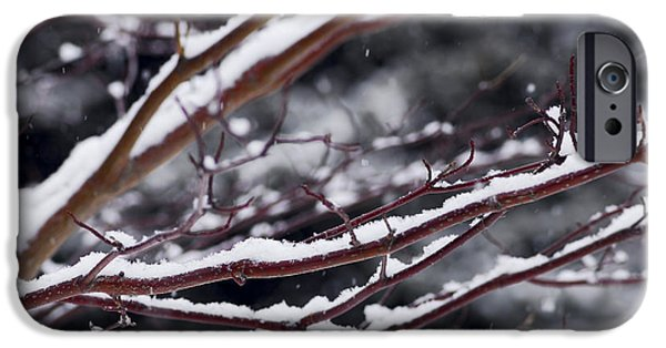 Snowy iPhone Cases - Snowfall and tree iPhone Case by Elena Elisseeva
