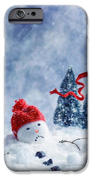 Snowball iPhone Cases - Snowman  iPhone Case by Amanda And Christopher Elwell
