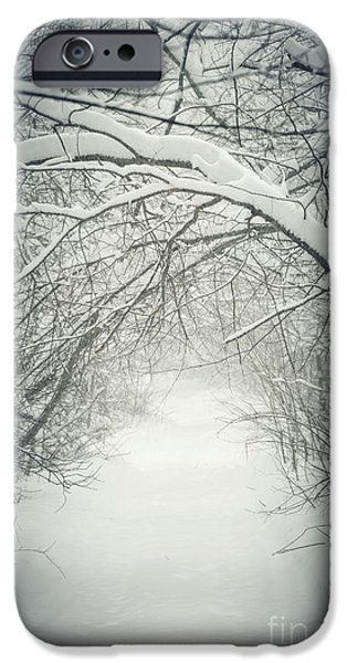 Overhang iPhone Cases - Snowy winter path in forest iPhone Case by Elena Elisseeva