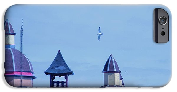 Flying Seagull iPhone Cases - Soar iPhone Case by Dan Sproul
