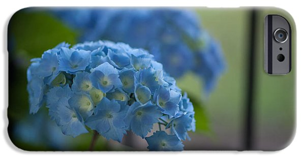 Hydrangeas iPhone Cases - Soft Blue Hydrangea iPhone Case by Mike Reid