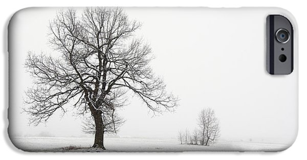 Snowy Day iPhone Cases - Solitary Tree iPhone Case by Michal Boubin