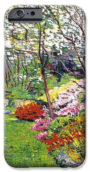 SPRING FOREST VISION iPhone Case by David Lloyd Glover