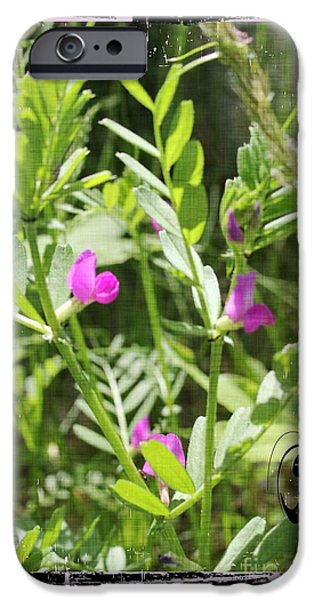 iPhone Cases - Spring Vetch Wildflower iPhone Case by Spirit Baker