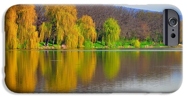 Willow Lake iPhone Cases - Springtime in Germany iPhone Case by Mountain Dreams