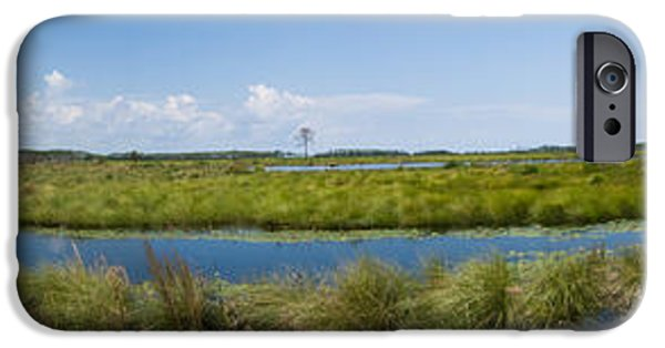 Beauty Mark iPhone Cases - St. Marks National Wildlife Refuge iPhone Case by Rich Leighton
