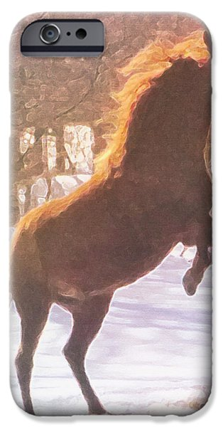 Paso Fino Stallion iPhone Cases - Stallion iPhone Case by Patricia Keller