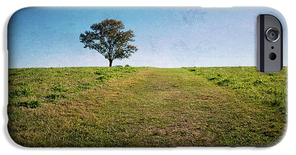 Farm Stand iPhone Cases - Stands Alone iPhone Case by Karol  Livote