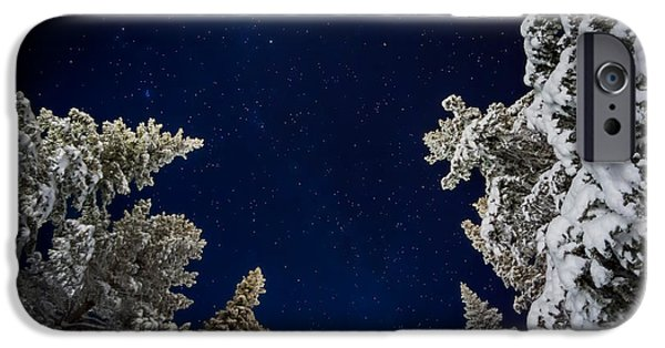 Lapland iPhone Cases - Starry Cold Night And Trees, Lapland iPhone Case by Panoramic Images
