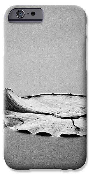 Stillness  iPhone Case by Scott Pellegrin