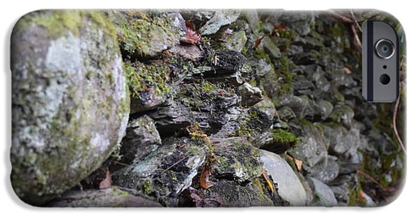 Oak Creek iPhone Cases - Stone Wall Moss iPhone Case by Curtis Krusie