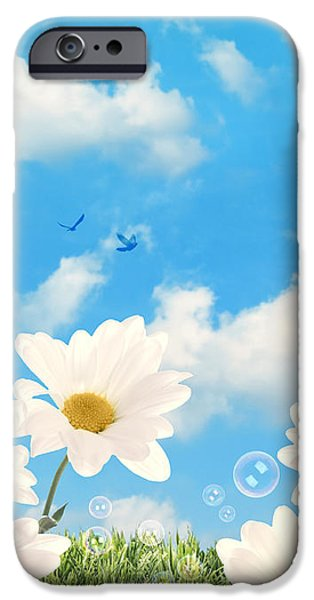 Summer Daisies iPhone Case by Amanda And Christopher Elwell