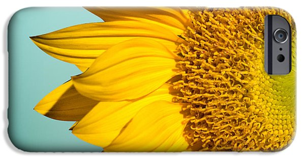 Orsillo Digital iPhone Cases - Sunflower iPhone Case by Mark Ashkenazi