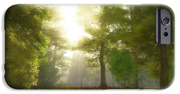 Sun Rays Digital iPhone Cases - Sunlit Meadow iPhone Case by Cynthia Decker