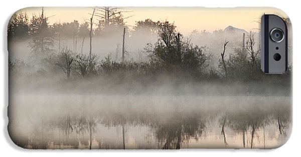 Local Attraction iPhone Cases - Sunrise In Fog, Lake Cassidy iPhone Case by Jim Corwin