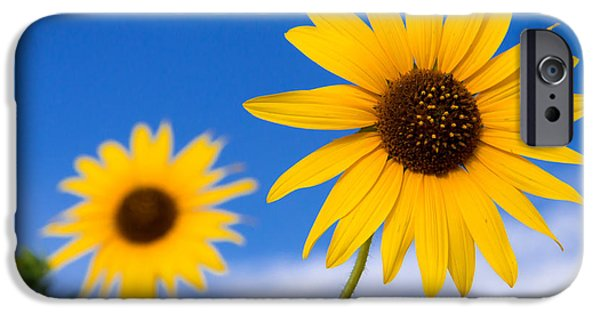 Morning iPhone Cases - Sunshine iPhone Case by Chad Dutson