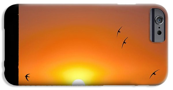 Hirundo iPhone Cases - Swallows Flying At Sunset iPhone Case by Laurent Laveder