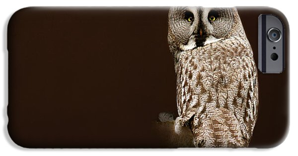 Animal Photography Mixed Media iPhone Cases - Tawny Owl iPhone Case by Heike Hultsch