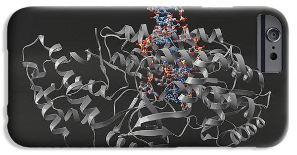 Reverse Art iPhone Cases - Telomerase Molecule Bound To Dna iPhone Case by Laguna Design