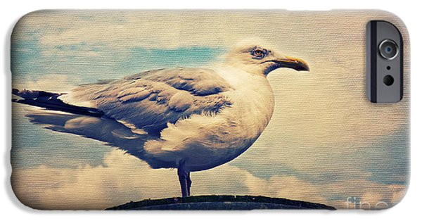 Seagull Mixed Media iPhone Cases - The Bird iPhone Case by Angela Doelling AD DESIGN Photo and PhotoArt