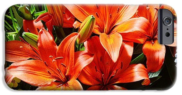 United States iPhone Cases - The Color Orange iPhone Case by Kathleen Struckle