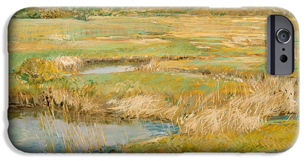 Concord iPhone Cases - The Concord Meadow iPhone Case by Childe Hassam