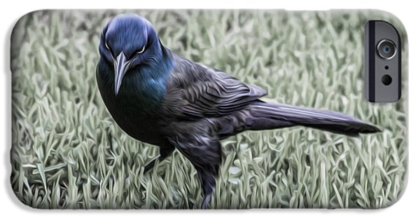 Jeff Swanson iPhone Cases - The Grackle iPhone Case by Jeff Swanson