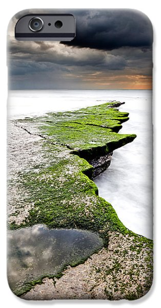 Waterscape iPhone Cases - The green path iPhone Case by Jorge Maia