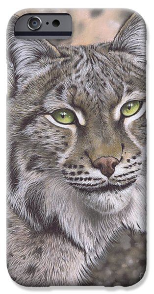 Bobcats Pastels iPhone Cases - The Lynx Effect iPhone Case by Karie-Ann Cooper