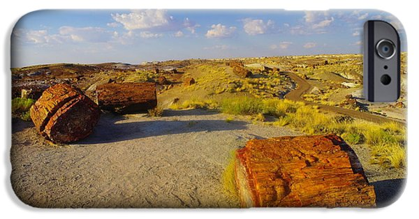 Arizonia iPhone Cases - The Painted Desert iPhone Case by Jeff  Swan