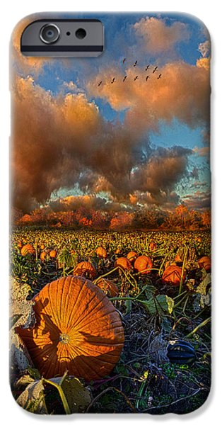 Crops iPhone Cases - The Survivors iPhone Case by Phil Koch
