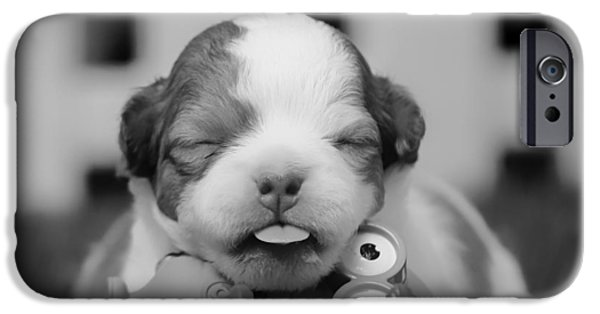 Dog And Toy iPhone Cases - This New Life iPhone Case by Mountain Dreams