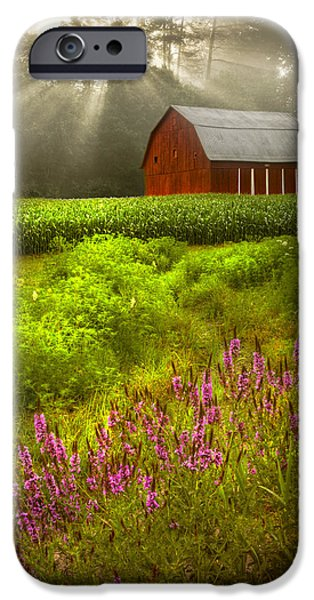 Old Barn iPhone Cases - Touched by the Sun iPhone Case by Debra and Dave Vanderlaan