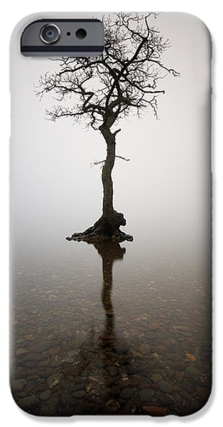 Business Photographs iPhone Cases - Tree iPhone Case by Grant Glendinning