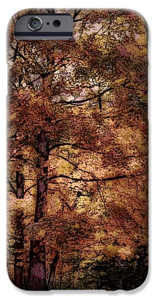 Fall iPhone Cases - Sunday Afternoon iPhone Case by Michael James Greene