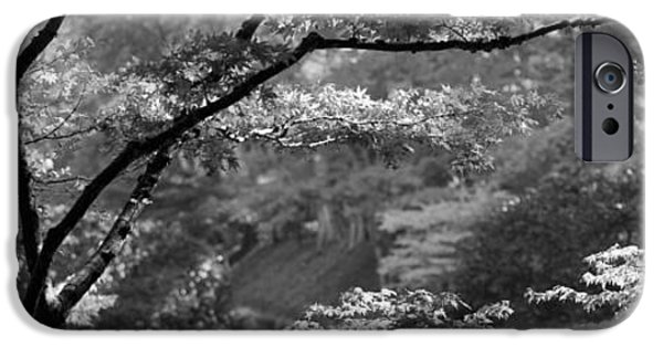 Garden Scene iPhone Cases - Trees In A Garden, Butchart Gardens iPhone Case by Panoramic Images