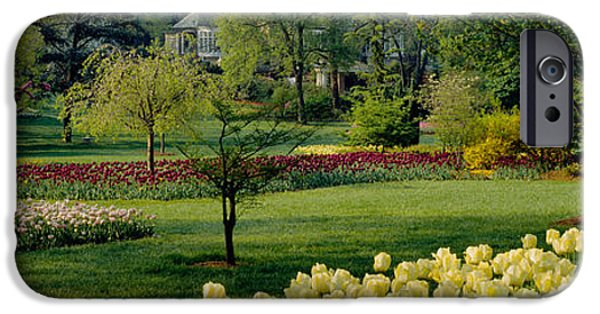 Garden Scene iPhone Cases - Tulip Flowers In A Garden, Sherwood iPhone Case by Panoramic Images