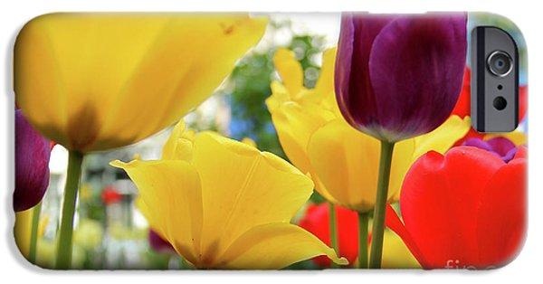 Orsillo Digital iPhone Cases - Tulips  iPhone Case by Mark Ashkenazi