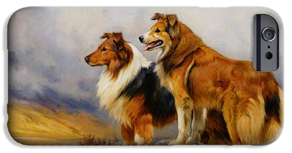 Wright Barker iPhone Cases - Two Collies Above A Lake iPhone Case by Wright Barker