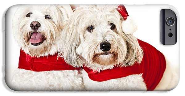 Santa iPhone Cases - Two cute dogs in santa outfits iPhone Case by Elena Elisseeva