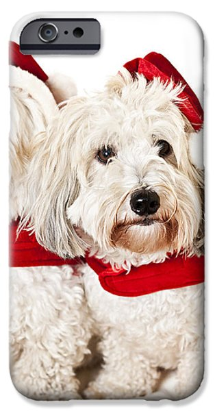 Two cute dogs in santa outfits iPhone Case by Elena Elisseeva