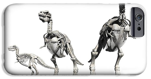 T Rex iPhone Cases - Tyrannosaurus Rex Skeletons, Artwork iPhone Case by Victor Habbick Visions