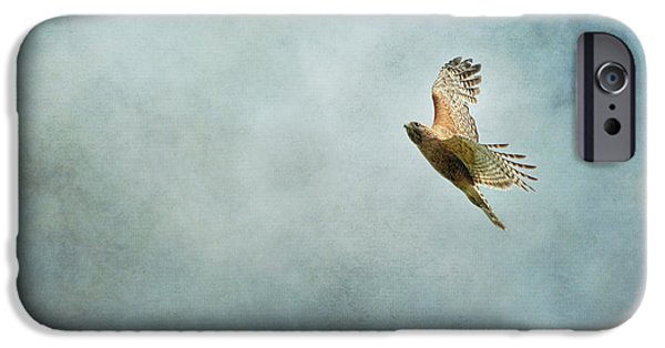 Hawk iPhone Cases - Up Up and Away iPhone Case by Jai Johnson