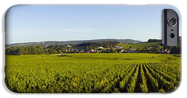 Winery Photography iPhone Cases - Vineyard, Mercurey, France iPhone Case by Panoramic Images