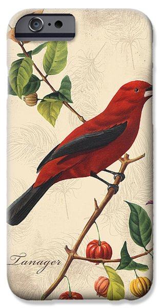 Nature Study Digital Art iPhone Cases - Vintage Bird Study-E iPhone Case by Jean Plout