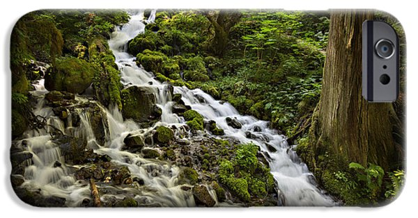 Recently Sold -  - Creek iPhone Cases - Wahkeena Creek iPhone Case by Mary Jo Allen