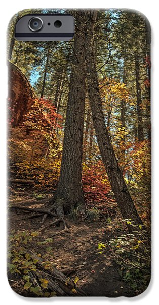 West Fork iPhone Cases - West Fork Fall Color iPhone Case by Tam Ryan