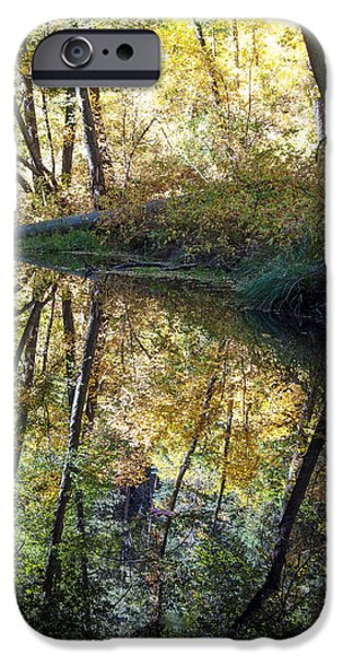 West Fork iPhone Cases - West Fork Reflections iPhone Case by Tam Ryan